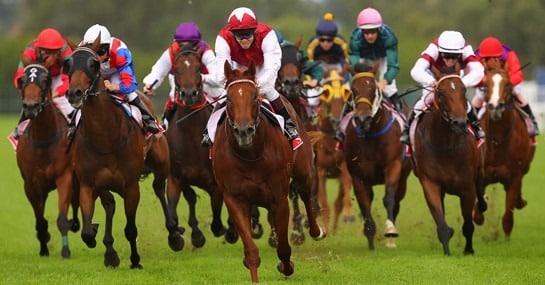 apostar em corridas de cavalo marrom