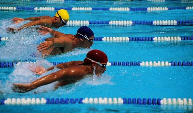apostas esportivas natação