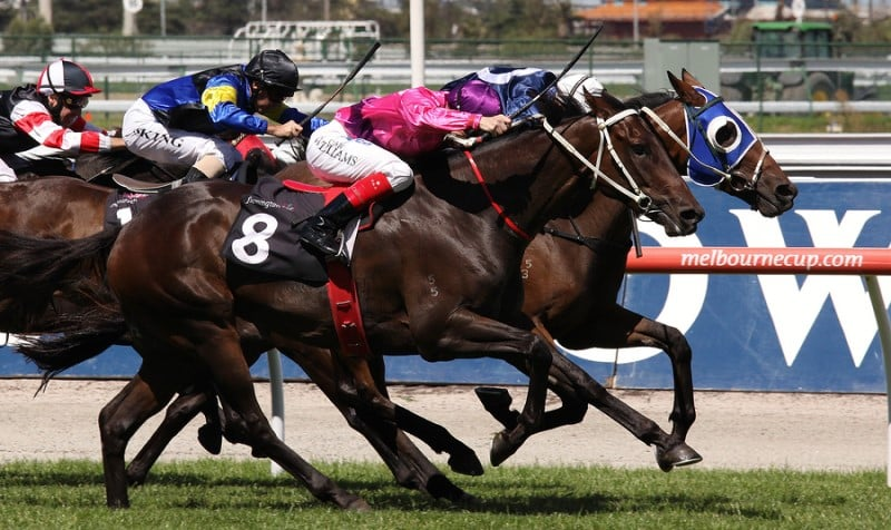corrida de cavalo em Melbourne Cup