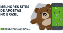 urso Betto segurando um celular com apostas online